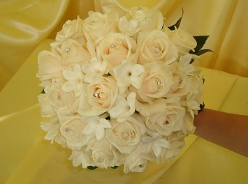Crinul Nunta Timisoara