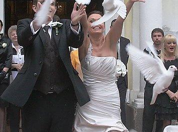 White Wedding Pigeons Nunta Timisoara