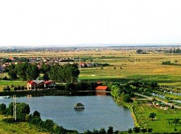 Complex Flonta Nunta Timisoara
